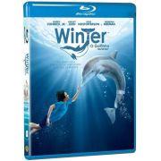Winter: o Golfinho - Blu-ray