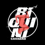 Camiseta Masculina Biquini Cavadão - Logo Ao Vivo