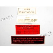 Kit Adesivos Etiqueta Motor Fusca Et01