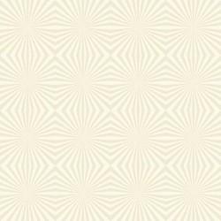 Papel de Parede Ilusão Lines